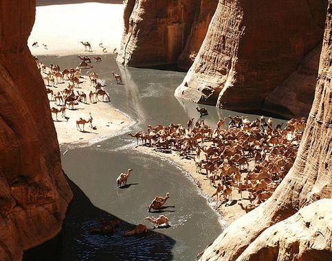 Guelta d'Archei Massif de l'Ennedi Tchad